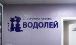 купить объёмные буквы Клиника «Водолей»